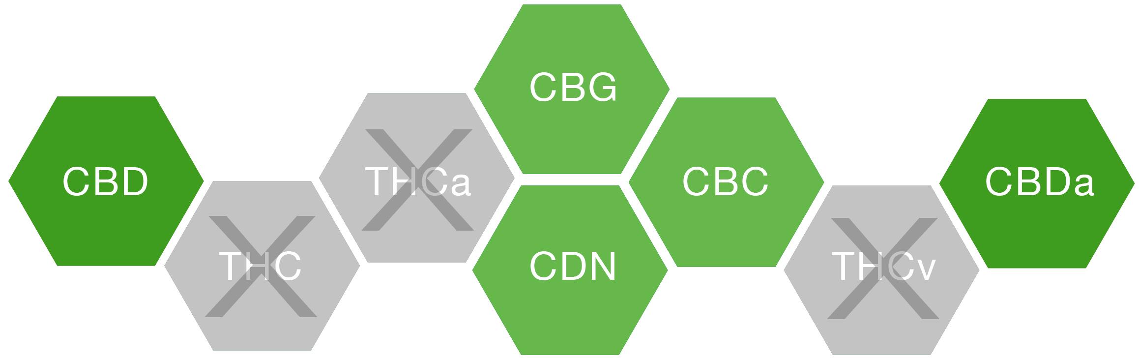 cbd broad spectrum diagram