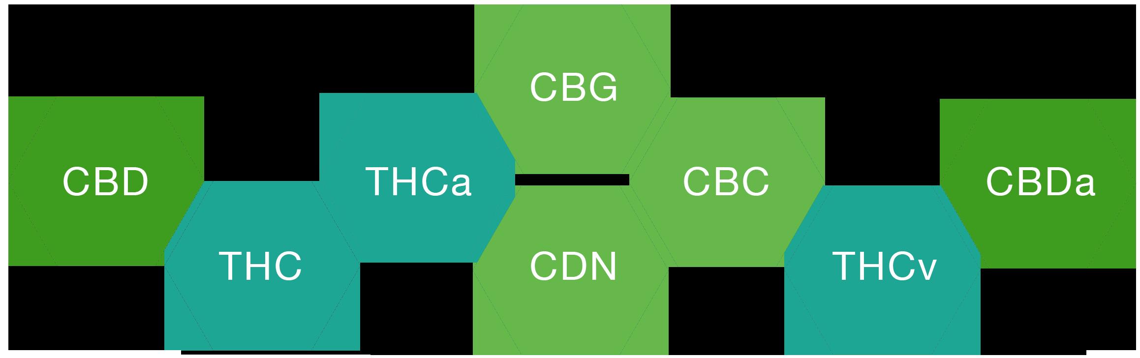 cbd full spectrum diagram